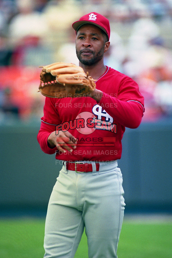 St. Louis Cardinals shortstop Ozzie Smith (1) during Spring Training 1993 at Joker Marchant Stadium in Lakeland, Florida.  (MJA/Four Seam Images)