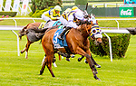 JUNE 07, 2019 : Amade (IRE), with Flavien Prat, wins the Belmont Gold Cup Invitatinal, at Belmont Park,  in Elmont, NY, June 7, 2019.  Sue Kawczynski_ESW_CSM