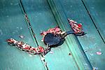 Old pad lock Colonial Williamsburg, Virginia, Fine Art Photography by Ron Bennett, Fine Art, Fine Art photography, Art Photography, Copyright RonBennettPhotography.com ©