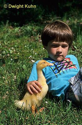 DG20-107z  Pekin Duck - boy with 18 day old duckling