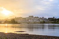 France, Indre-et-Loire (37), Amboise et la Loire au lever du soleil