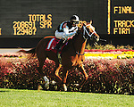 Miss Lucky Sevens, a daughter of Big Brown, wins Race 4 at Churchill Downs, Maiden Special Weight for 2-year-old fillies 1 mile on turf, with jockey Shaun Bridgmohan riding for Eclipse Thoroughbred Partners and trainer Wayne Catalano.November 10, 2012