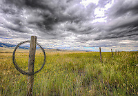 Don't fence me in - Montana