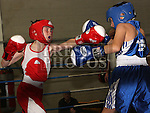 Louth Meath Boxing Championships 2015