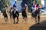 November 6, 2020: Vequist, ridden by Joel Rosario, wins the Juvenile Fillies on Breeders' Cup Championship Friday at Keeneland on November 6, 2020: in Lexington, Kentucky. Wendy Wooley/Breeders' Cup/Eclipse Sportswire/CSM