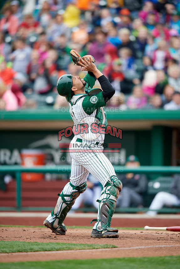 Fort Wayne TinCaps catcher Webster Rivas (8) settles under a pop up during a game against the Wisconsin Timber Rattlers on May 10, 2017 at Parkview Field in Fort Wayne, Indiana.  Fort Wayne defeated Wisconsin 3-2.  (Mike Janes/Four Seam Images)