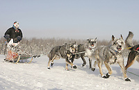 Sunday February 26, 2006 Willow, Alaska.   The dogs and her face frosted from the 20 below zero run from Yentna, McKenzie Brooks and team run on Willow Lake towards an 8th place finish.