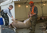 A hunter and his son remove a deer from their pickup truck at the check station.<br />