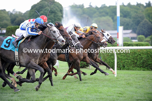 Grassy, far left, edges the field in a dramatic six-horse photo finish at Saratoga Race Course on Aug. 22, 2009 Grassy (9) wins wild photo finish in Saratoga.