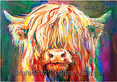 Simon, REALISTIC ANIMALS, REALISTISCHE TIERE, ANIMALES REALISTICOS, innovative, paintings+++++SueGardner_BabyHighland,GBWR194,#a#, EVERYDAY