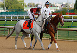 September 12, 2015:  #7 Just Wicked and jockey Jose Ortiz in the $200,000 Grade 2 Pocahontas for 2 year old fillies at Churchill Downs.  Candice Chavez/ESW/CSM
