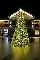 Tree Lighting_2019