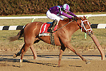 Favorite Princess of Sylmar with Chris DeCarlo are easy winners in the 40th  running of the Busanda Stakes for 3-year old fillies, going 1 mile 70 yards on the inner dirt, at Aqueduct Racetrack.  Trainer Todd Pletcher.  Owner King of Prussia Stables