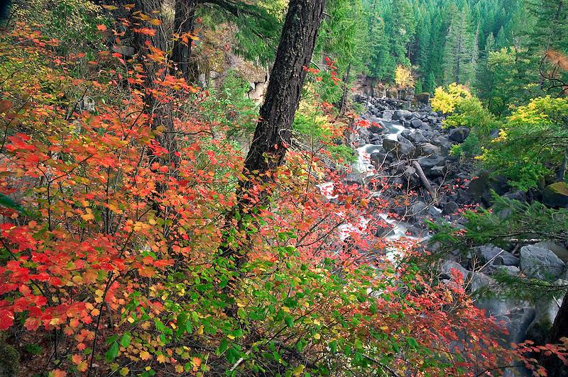 Avenue of Boulders. Rogue River Wild and Scenic River, Oregon