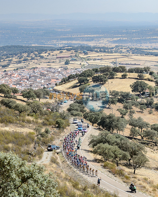 The peloton on the final climb during Stage 14 of La Vuelta d'Espana 2021, running 165.7km from Don Benito to Pico Villuercas, Spain. 28th August 2021.     <br /> Picture: Cxcling | Cyclefile<br /> <br /> All photos usage must carry mandatory copyright credit (© Cyclefile | Cxcling)