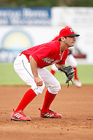 June 21, 2009:  Matt Carpenter of the Batavia Muckdogs in the field during a game at Dwyer Stadium in Batavia, NY.  The Muckdogs are the NY-Penn League Short-Season Class-A affiliate of the St. Louis Cardinals.  Photo by:  Mike Janes/Four Seam Images