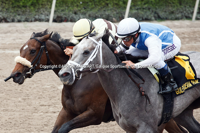 March 29, 2014: Jockey Javier Castellano and In Tune(#6) outlast House Rules and Alex Solis in the Gulfstream Oaks(G2) on Florida Derby day at Gulfstream Park in Hallandale Beach (FL). Arron Haggart/ESW/CSM
