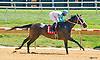 Money Or Love winning at Delaware Park on 8/15/16