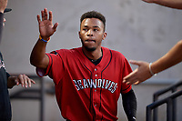Erie SeaWolves Jose Azocar (24) high fives teammates during an Eastern League game against the Akron RubberDucks on August 30, 2019 at Canal Park in Akron, Ohio.  Erie defeated Akron 3-2.  (Mike Janes/Four Seam Images)