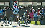 BENSALEM, PA -SEPTEMBER 24: Songbird #5 (red cap), ridden by Mike Smith, in the paddock before winning the Cotillion Stakes on Pennsylvania Derby Day at Parx Racing and Casino on September 24, 2016 in Bensalem, PA. (Photo by Scott Serio/Eclipse Sportswire/Getty Images)