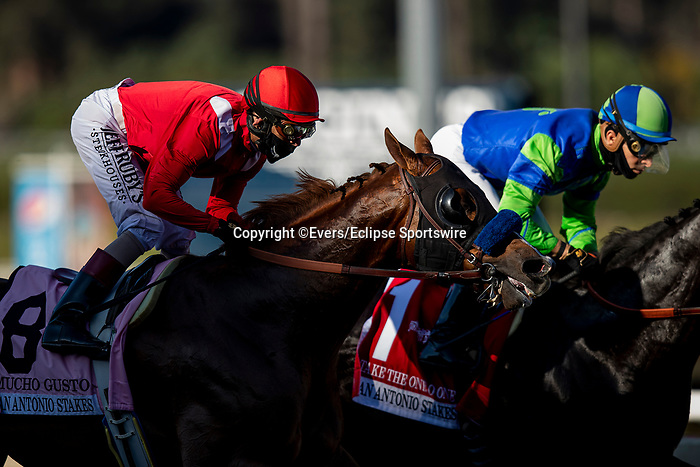 December 26, 2020: Mucho Gusto at the San Antonio Stakes at Santa Anita Park in Arcadia, California on December 26, 2020. Evers/Eclipse Sportswire/CSM