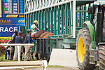 HALLANDALE BEACH, FL- MARCH 19: Horses being loaded into the starting gate at Gulfstream Park on March 19, 2016 in Hallandale Beach, Florida. (Photo by Arron Haggart/Eclipse Sportswire/Getty Images)