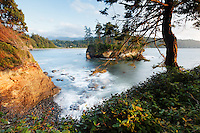 Rugged shoreline at Salt Creek Recreation Area, Clallam County, Washington, USA