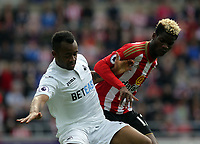 SUNDERLAND, ENGLAND - MAY 13: Jordan Ayew of Swansea City against Didier Ndong of Sunderland during the Premier League match between Sunderland and Swansea City at the Stadium of Light, Sunderland, England, UK. Saturday 13 May 2017