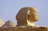 Egypt. Cairo.  The Sphinx at Giza.