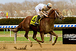 OZONE PARK, NEW YORK,  APR 07: National Flag, #4, ridden by Flavien Prat, wins the Bay Shore Stakes on Wood Memorial Day at Aqueduct Racetrack, on April 7, 2018 in Ozone Park, New York. ( Photo by Sue Kawczynski/Eclipse Sportswire/Getty Images)