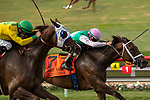 DEL MAR, CA  AUGUST 31: #7 Juliet Foxtrot, ridden by Drayden Van Dyke, battles a fast charging #1 Vasilika, ridden by Flavien Prat, in the stretch of the John C. Mabee Stakes (Grade ll) on August 31, 2019 at Del Mar Thoroughbred Club in Del Mar, CA. ( Photo by Casey Phillips/Eclipse Sportswire/CSM)