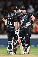 20th December 2020; Hamilton, New Zealand;  Kane Williamson (L) and Tim Seifert, New Zealand Black Caps versus Pakistan, International Twenty20 Cricket. Seddon Park, Hamilton, New Zealand.