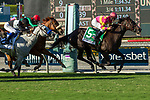 """ARCADIA, CA. SEPTEMBER 30:  #5 Avenge, ridden by Flavien Prat, wins the Rodeo Drive Stakes (Grade l) """"Win and You're In Filly and Mare Turf Division"""" on September 30, 2017 at Santa Anita Park in Arcadia, CA.(Photo by Casey Phillips/Eclipse Sportswire/Getty Images)"""