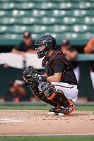 GCL Orioles catcher Jose Montanez (31) awaits the pitch in front of home plate umpire Kenny Jackson during the first game of a doubleheader against the GCL Twins on August 1, 2018 at CenturyLink Sports Complex Fields in Fort Myers, Florida.  GCL Twins defeated GCL Orioles 7-6 in the completion of a suspended game originally started on July 31st, 2018.  (Mike Janes/Four Seam Images)