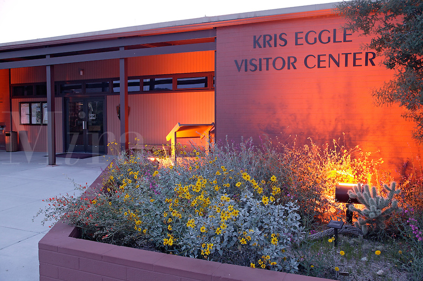 The Kris Eggle Visitor Center, with Organ Pipe Cactus (Stenocereus thurberi), Organ Pipe Cactus National Monument, Arizona