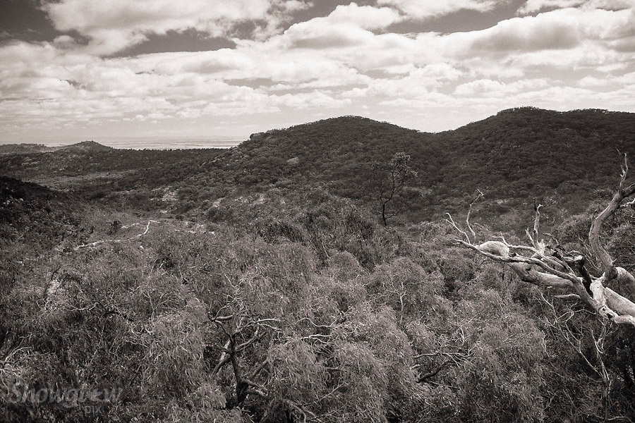 Image Ref: CA458<br /> Location: You Yangs<br /> Date of Shot: 17th Dec 2016