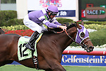 March 28, 2015:  #12 Weekend Express (KY)  with jockey Corey Lanerie  on board, breaks his maiden on Florida Derby Day at Gulfstream Park  in Hallandale Beach, Florida.    Liz Lamont/ESW/CSM