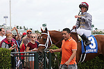 HALLANDALE BEACH, FL - JANUARY 14:  #3 Sandiva (IRE) with jockey Javier Castellano on board in the winners' circle of the 19th running of the Marshua's River G3 Stakes at Gulfstream Park on January 14, 2017 in Hallandale Beach, Florida. (Photo by Liz Lamont/Eclipse Sportswire/Getty Images)