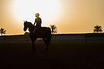 MAR 27,2015:Epiphaneia,exercises in preparation for the Dubai World Cup at Meydan in Dubai,UAE. Kazushi Ishida/ESW/CSM