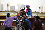 Itsmyluckyday with Elvis Trujillo up sets a new track record in winning the Holy Bull (G3) at Gulfstream Park.  Hallandale Beach Florida. 01-26-2013