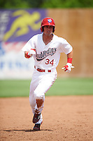 Auburn Doubledays left fielder Nick Banks (34) running the bases during a game against the Vermont Lake Monsters on July 13, 2016 at Falcon Park in Auburn, New York.  Auburn defeated Vermont 8-4.  (Mike Janes/Four Seam Images)