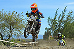 NELSON, NEW ZEALAND - 2021 Mini Motocross Champs: 2.10.21, Saturday 2nd October 2021. Richmond A&P Showgrounds, Nelson, New Zealand. (Photos by Barry Whitnall/Shuttersport Limited) 32
