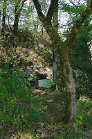 Rocher perce au nord-ouest de l'entree du cingle