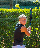 The Hague, Netherlands, 11 June, 2017, Tennis, Play-Offs Competition, <br /> Photo: Henk Koster/tennisimages.com