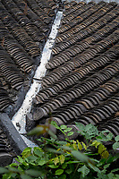 Yangzhou, Jiangsu, China.  Roof Tiles on a Private Residence.