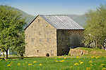 Nippenose Valley. Stone barn in Oval, PA.