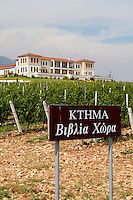 Vineyard. Winery building. Biblia Chora Winery, Kokkinohori, Kavala, Macedonia, Greece