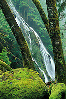 Waterfall falling into the Boulder River with moss covered boulders, Darrington, Washington
