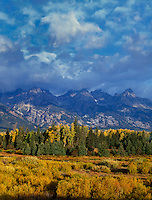 749450299 sunset light accentuates the fall colored yellow aspen trees populous tremuloides and willows at blacktail ponds below the teton ranger in grand tetons national park wyoming