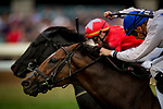 LEXINGTON, KY - OCTOBER 07: Heart To Heart #1p, ridden by Florent Geroux drives to the wire in the Shadwell Turf Stakes at Keeneland Race Course on October 07, 2017 in Lexington, Kentucky. (Photo by Alex Evers/Eclipse Sportswire/Getty Images)